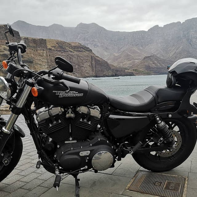 Harley Davidson 1200 Forty-eight
