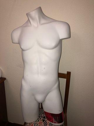 Maniquí torso busto hombre caballero