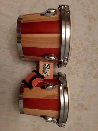 Bongos Pearl Drums. Instrumento musical