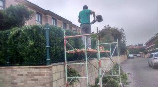 jardinero EL PRESUPUESTO MAS BAJO!!