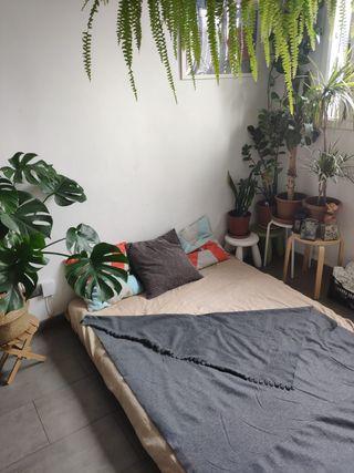 Sofa cama futón madera Grankulla Ikea