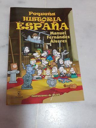 libro pequeña historia de España