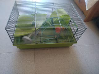 haula hamster