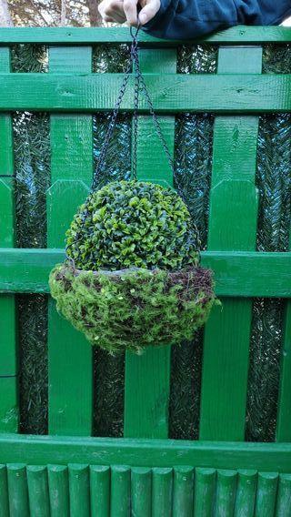 Bola de planta artificial jardin