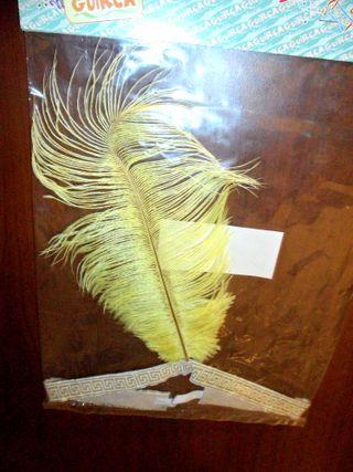 Disfraz. Diadema pluma. Años 20. Carnaval