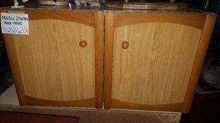 mueble de 2 puertas pino claro veteado