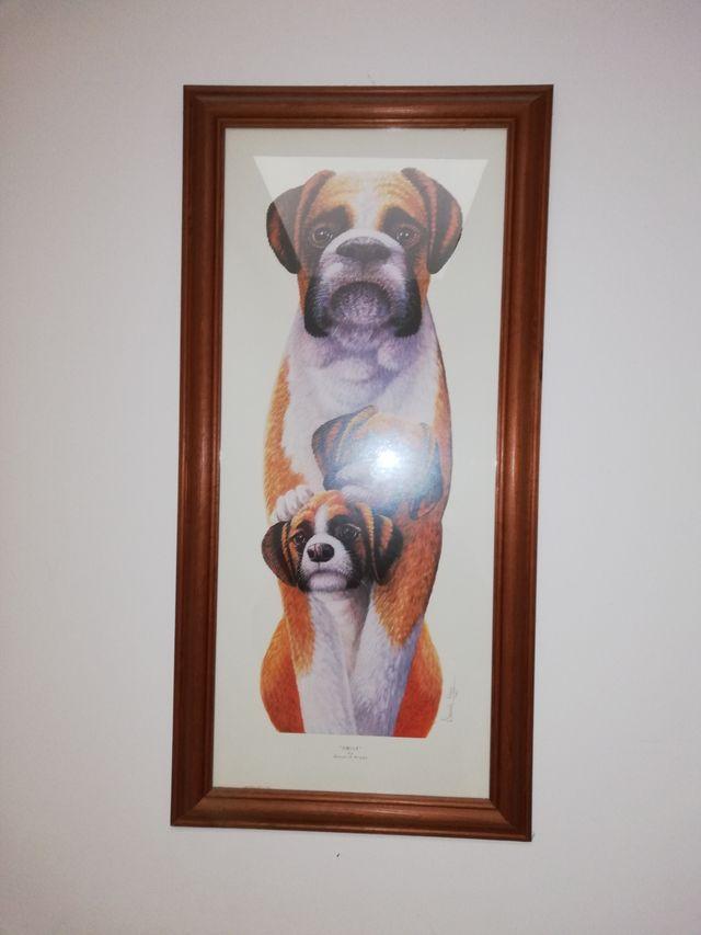 BOXER DOG PRINT