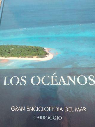 Pack libros nuevos Los océanos y La luz en la pint
