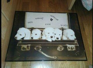 cuadro de cartón de perros
