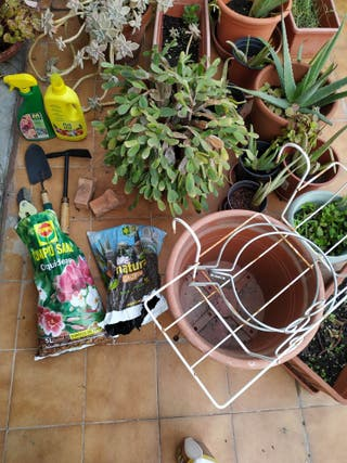 Plantas, herramientas y productos del jardín