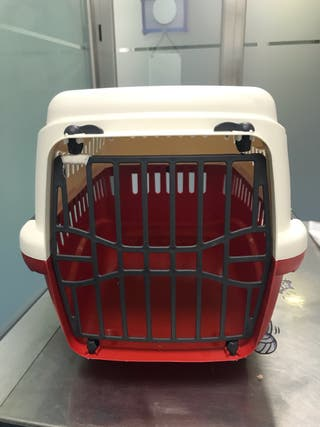 Transportin para animales