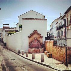 Cambio piso por casa en el campo (Antequera, Málaga)