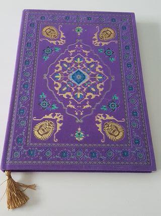 libreta disney Aladin