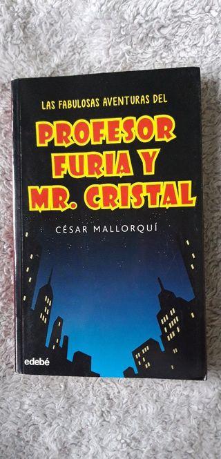 Las aventuras del profesor furia y mr.cristal