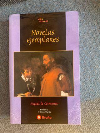 NOVELAS EJEMPLARES ( Miguel de Cervantes )