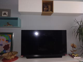 TELEVISION OLED D55C9MP 55' PULGADAS