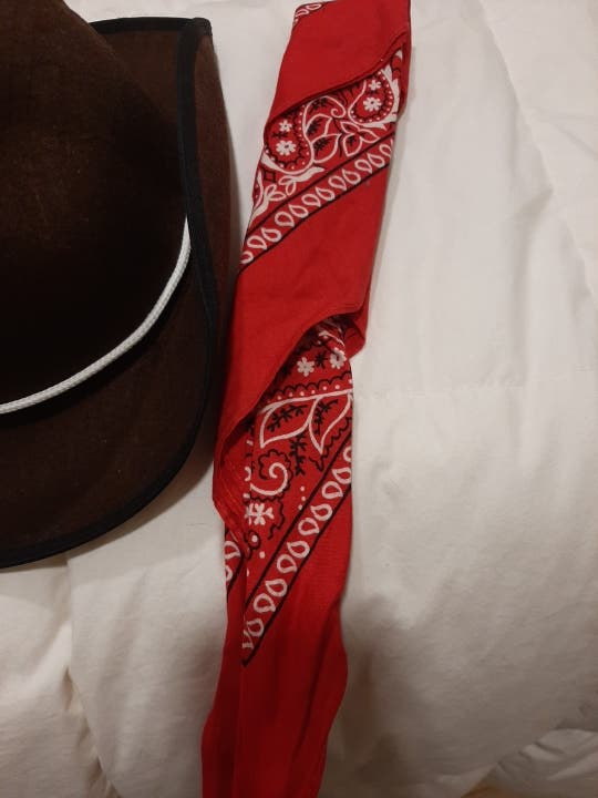 Disfraz gorro y pañuelo vaquero