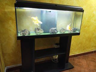 acuario 120 litros + mesa