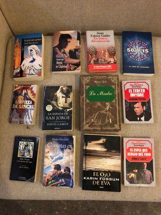 Lote 12 libros novela español