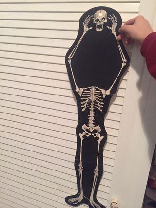 Poster esqueleto