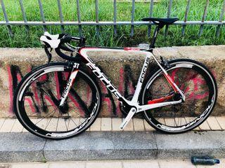 Bicicleta Carretera Carbono Focus Izalco T54 7.9kg