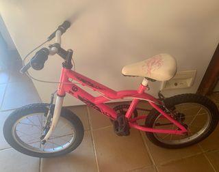 Bicicleta Ñiña