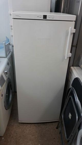Congelador +grantia +transporte