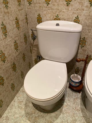 Taza WC baño ROCA