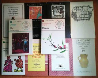 Lote de Libros Clásicos de Literatura