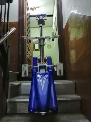 oruga de escalera