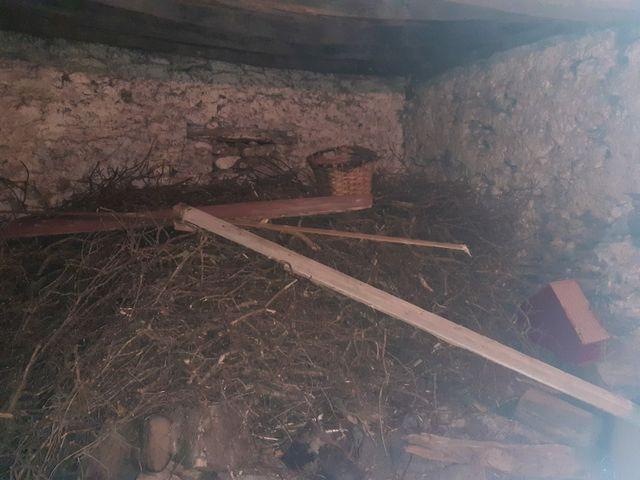 palos de madera