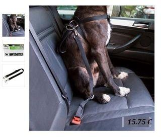 Cinturón seguridad para perro