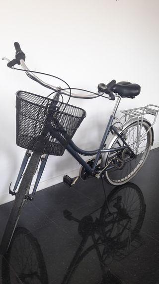 Bicicleta tipo holandesa - USADA