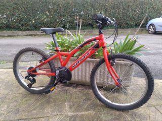 bici MONTY 20'