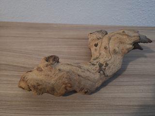 tronco para terrario