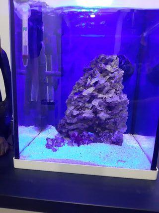 Nano Marino Blau 30 litros