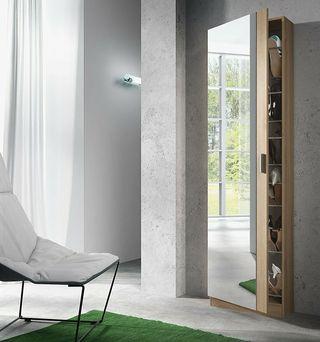 Mueble zapatero con puerta cristal espejo, armario