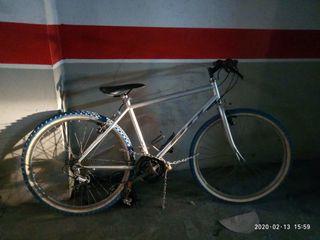 Bicicleta color gris plata