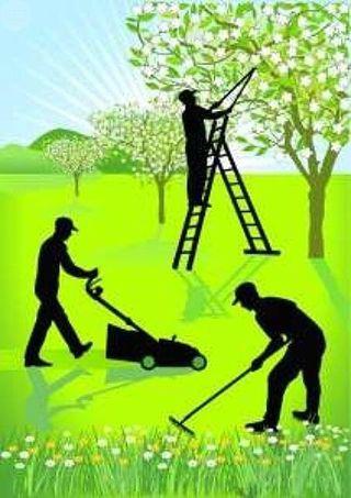 Trabajos de Jardinería, Obra y Pintura.