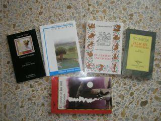 Libro novela literatura clasica
