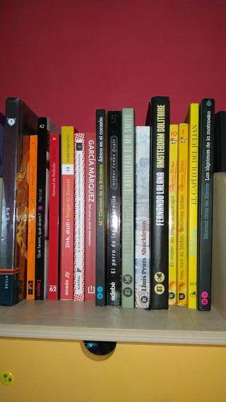Pack de 16 libros