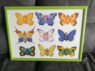 Cuadro bebés en mariposas