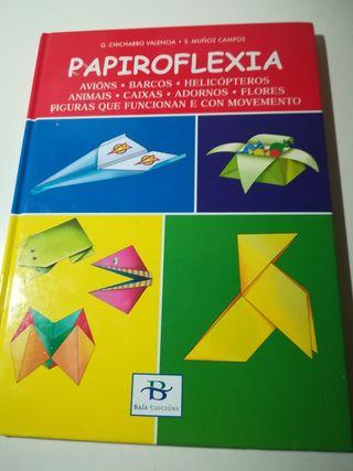 Libro infantil sobre papiroflexia. En galego