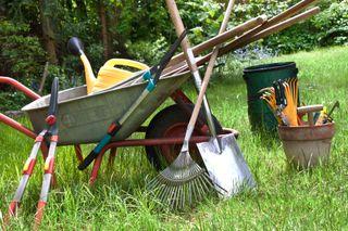 limpieza de jardines
