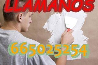 Pintor Barato Profesionales