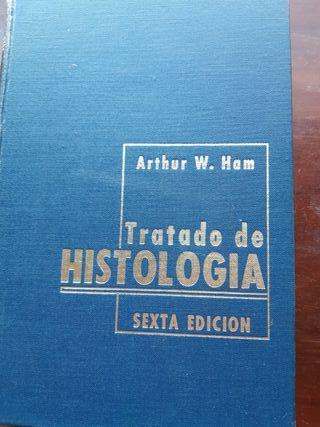 Histologia HAM