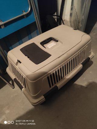 transportin perro gato