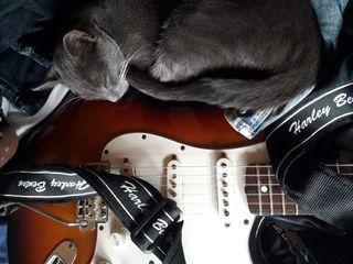 clases de guitarra- Xavi