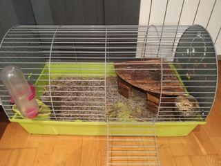 se vende jaula para conejo