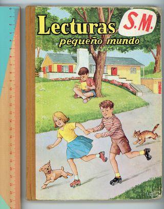 Libro lecturas infantiles: Lecturas pequeño mundo.